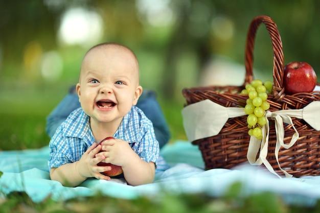 Portrait of little happy boy at the picnic