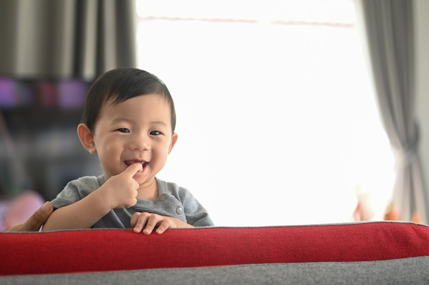 Portrait of lovely baby boy smiling and standing on couch.