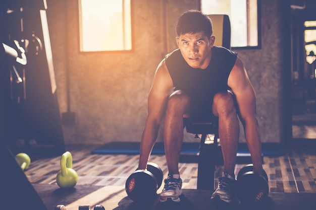 Portrait of a male muscular bodybuilder workout with dumbbell in fitness gym.