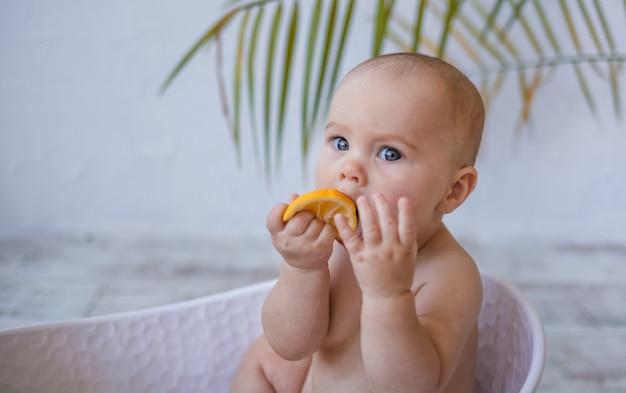 아기 목욕에 앉아서 텍스트를 위한 장소가 있는 흰색 배경에 레몬을 먹는 여자 아기의 초상화. 어린이를 위한 수처리