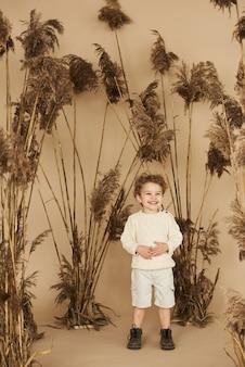 ベージュ色の背景に葦の美しい微笑む少年の肖像画