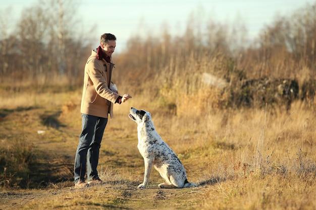 秋の日当たりの良いフィールドで中央アジアの羊飼い犬を訓練する白人男性の肖像画