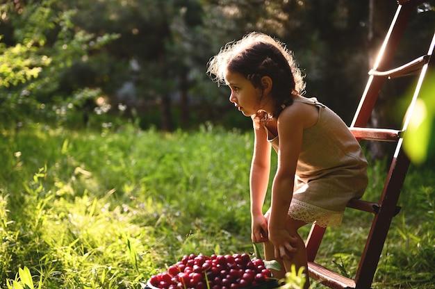 해질녘 시골집 정원에 있는 체리 양동이 옆에 있는 접사다리에 앉아 리넨 드레스를 입은 귀여운 소녀의 초상화. 아름다운 태양 광선은 여름날 정원으로 떨어진다