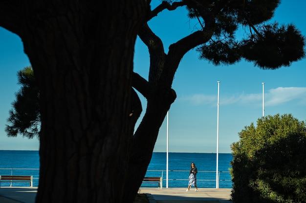フランス、サンシルシュルメール村の地中海の堤防にスカートをはいた少女の肖像画