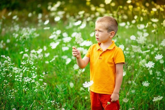 花、フィールドで花をスニッフィング子のフィールドで幸せな少年のポートレート