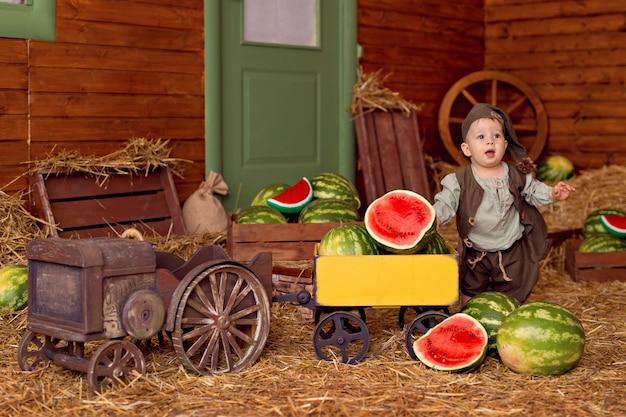 田舎で幸せな男の子の肖像画