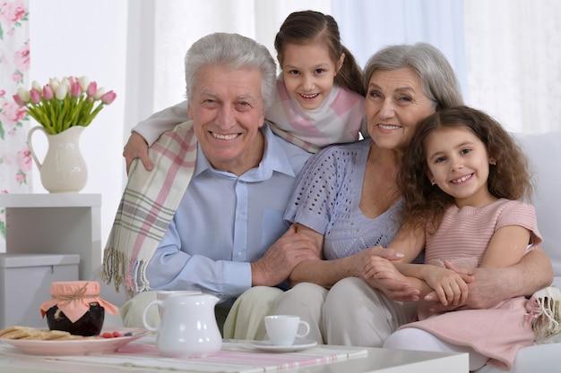 自宅で孫とラップトップと幸せな年配のカップルの肖像画