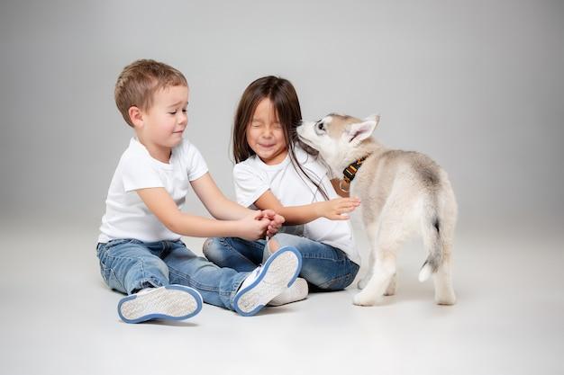 スタジオの床でシベリアンハスキーの子犬を楽しんでいるうれしそうな小さな女の子と男の子の肖像画。動物、友情、愛、ペット、子供時代、幸福、犬、ライフスタイルの概念