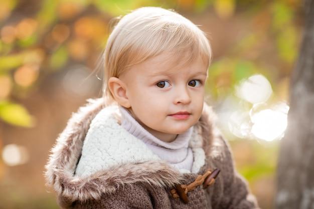 秋のニットセーターの小さな金髪の少年の肖像画。高品質の写真