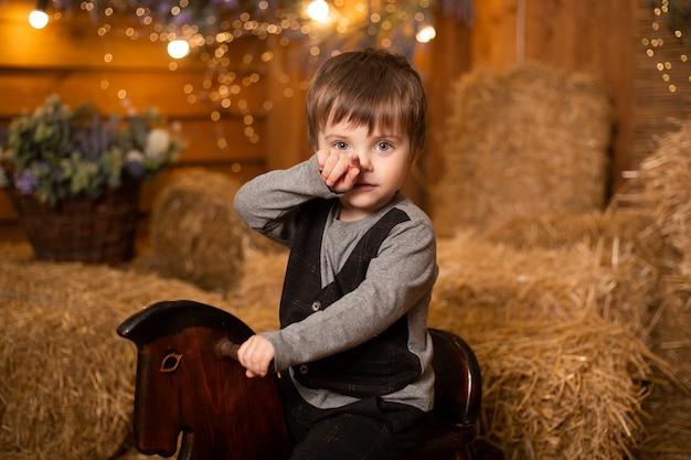 わらの束を持つファームのロッキングホースの小さな男の子の肖像画