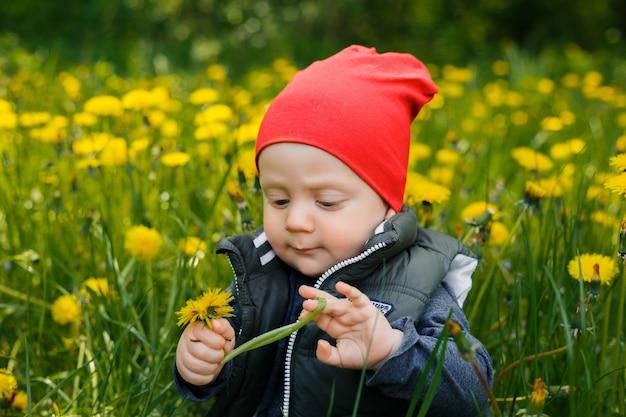 Портрет маленького белого кавказского мальчика в красной шляпе. ребенок сидит на траве среди желтых одуванчиков в парке.