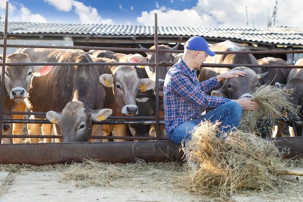 Портрет позитивного мужчины-фермера на ферме возле коров