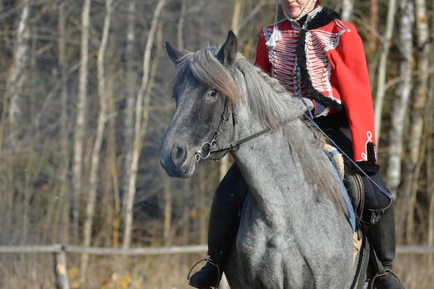 自然を背景にしたローン馬の肖像画。