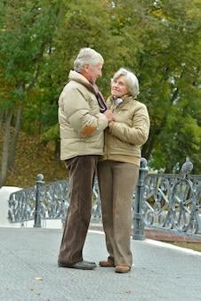 秋の公園で年配のカップルの肖像画