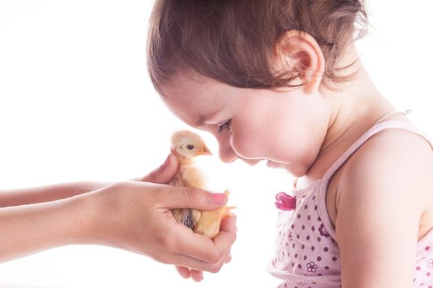 작은 닭을 보고 행복해 하는 웃는 아이의 초상화. 확대