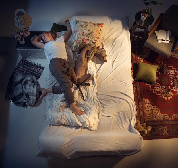 집에서 강아지와 함께 침대에서 자고 있는 여성, 여성 사육자의 초상화. 평면도. 피곤한 하루 일과 후에 잠자는 옷을 입은 가정부. 그의 애완 동물을 가까이에 들고. 직업, 일, 애완동물은 개념을 좋아합니다.