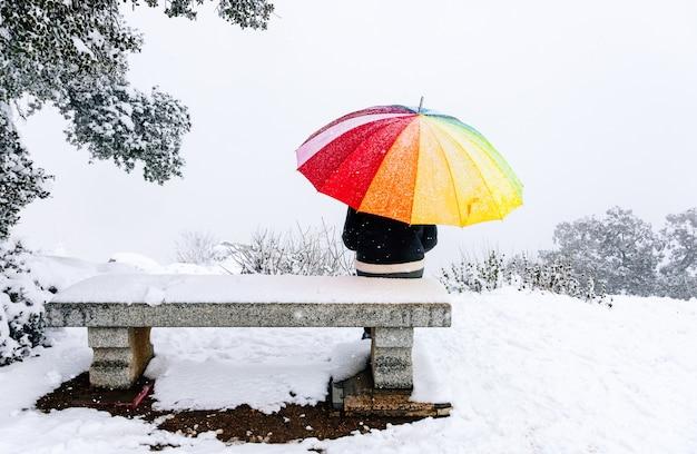 눈 덮인 풍경에 벤치에 앉아 화려한 우산을 가진 여자의 초상화.