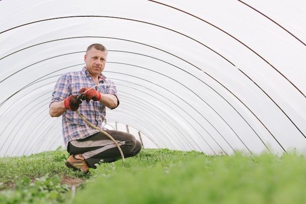 Портрет взрослого мужчины в теплице, поливающего растения из шланга