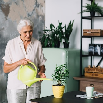 Portrait of an elderly woman watering the pot plant