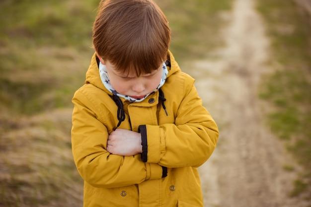 秋の公園で気分を害した子供の男の子の肖像画