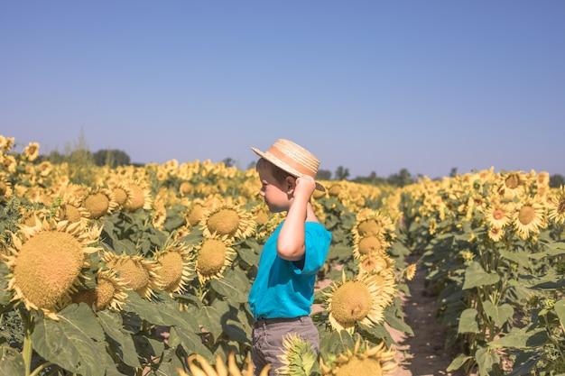 屋外の夏のひまわり畑の美しい小さな金髪の子供の男の子の肖像画。暖かい夏の日に楽しんでいるかわいい就学前の子供。子供と自然。幸せな夏。