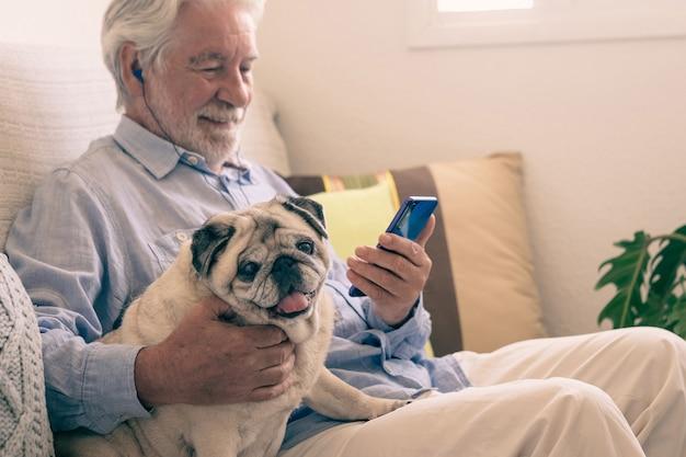 ソファに座って、家で一緒にリラックスして、透明な純血種のパグ犬の肖像画