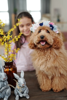 バックグラウンドで小さな女の子とテーブルに座っている彼女の頭にアクセサリーとかわいい小さな犬の肖像画
