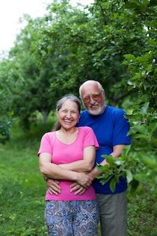 夏のリンゴ園でかわいい年配の男性と女性の肖像画。