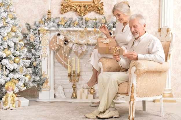 크리스마스를 축하하는 귀여운 노부부의 초상화