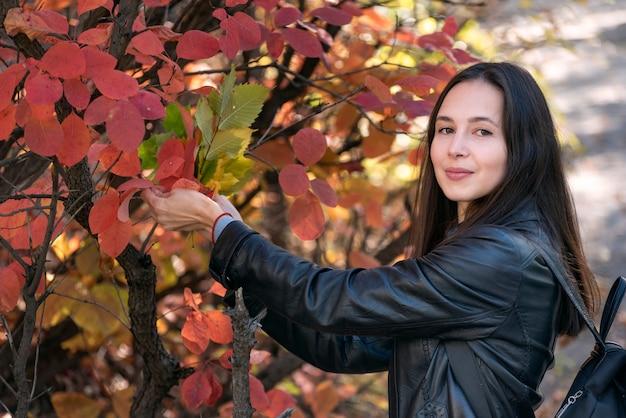 赤い葉を持つ木の近くの黒髪の少女の肖像画。森の中の美しい若い女性。
