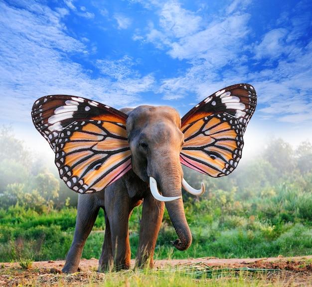 숲에서 나비 날개를 가진 코끼리의 초상화