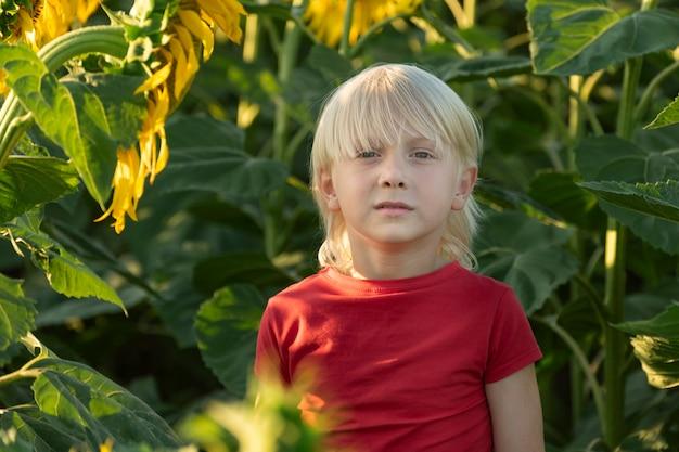 Портрет светловолосого мальчика на подсолнечном поле