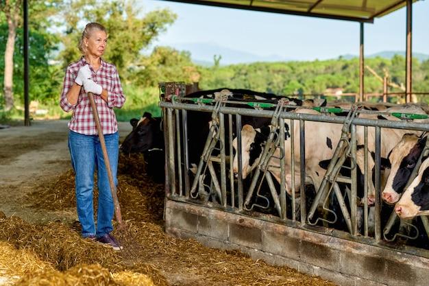농장에서 소를 먹이 농부의 초상화입니다.