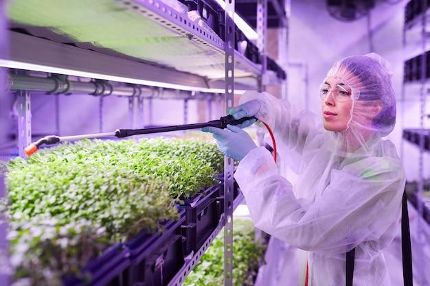青い光に照らされた植物保育園の温室で作業中に肥料を噴霧する女性の農業技術者の肖像画、コピースペース
