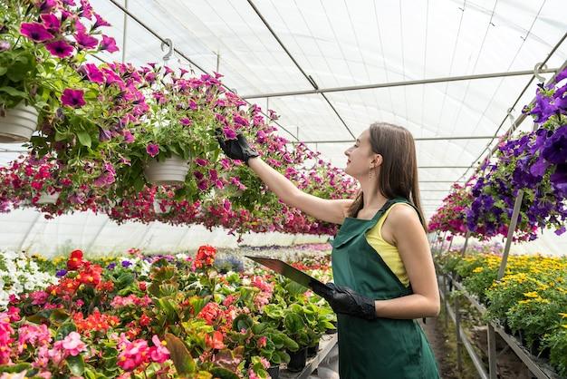 クリップボードを保持し、植物の状態をチェックし、温室で働く女性の保育園の肖像画。春