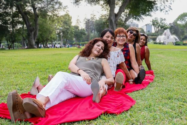 ピクニックで5人の美しい50歳の女性の肖像画