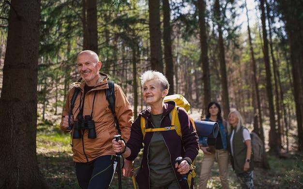 自然の森の中で、歩いて、屋外のシニアハイカーのグループの肖像画。