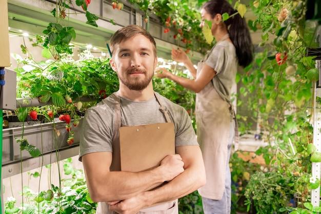 베리 온실에서 동료와 함께 작업하는 클립 보드와 잘 생긴 젊은 정원사의 초상화