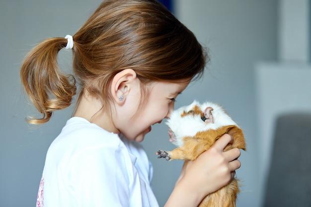 Портрет счастливой усмехаясь маленькой девочки обнимая красную морскую свинку.
