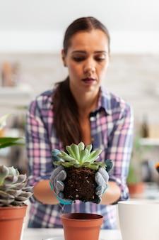 台所のテーブルに座っている多肉植物を保持している幸せな女性の肖像画。シャベル、手袋、肥沃な土壌、家の装飾用の花を使用して、セラミックポットに花を植え替える女性。