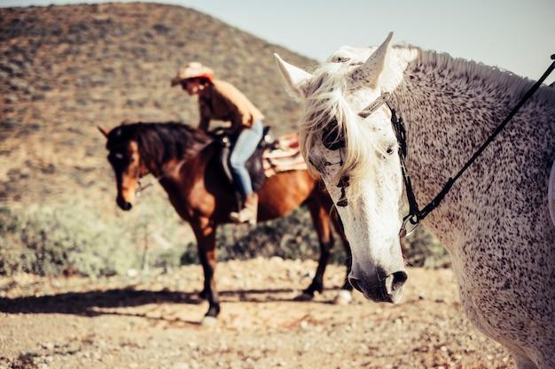 美しいライダーの女性ともう1匹の動物と馬の肖像画。西部のシーンで屋外のレジャー活動の晴れた日