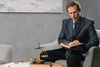 Portrait of mature male sitting on arm chair reading legal book
