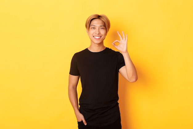 Портрет довольного и счастливого азиатского улыбающегося парня, демонстрирующего нормальный жест в знак одобрения, восхваляющего хорошую работу, желтая стена