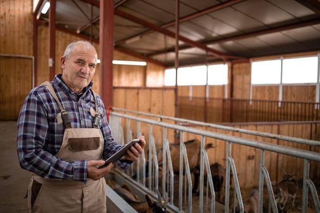 農家の家畜のそばに立っているタブレットコンピューターとシニア牛飼いの肖像画