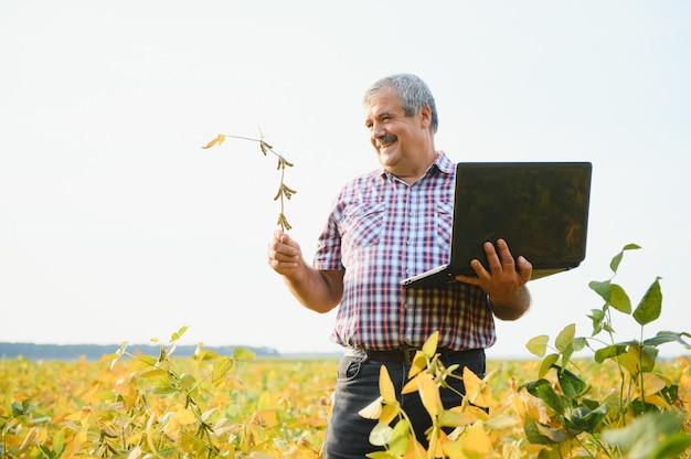 Портрет старшего трудолюбивого фермера-агронома, стоящего в поле сои, проверяя урожай перед сбором урожая. производство и выращивание экологически чистых продуктов питания.