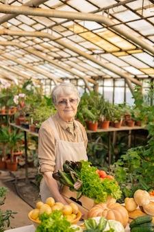 Портрет пожилой женщины в фартуке, стоящей у прилавка и готовящей органические продукты для продажи