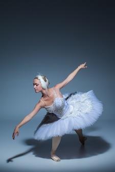 파란색 배경에 하얀 백조의 역할에 발레리나의 초상화