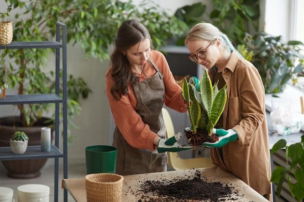 꽃집에서 일하거나 함께 정원을 가꾸는 동안 식물을 화분에 심는 두 여성 꽃집의 초상화, 복사 공간