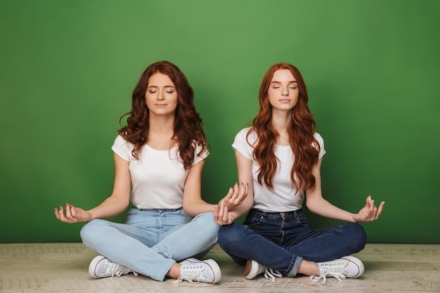 Портрет двух красивых рыжих девушек, сидящих на полу