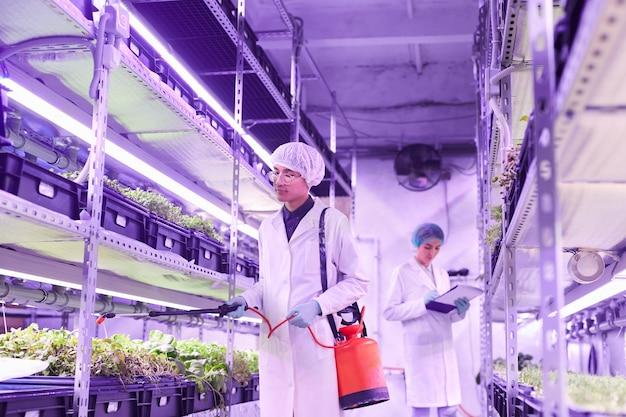 苗床温室で植物を世話する2人の若い労働者の肖像画、前景に肥料を噴霧する男性に焦点を当て、スペースをコピー